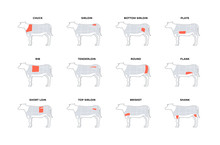 Set Of Vector Beef Steak Diagr...