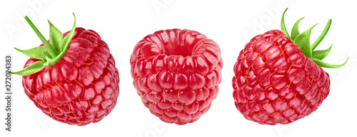 Photo Stands Macro photography Ripe raspberries collection isolated on white background