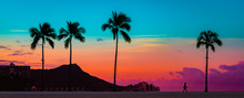 Tropical Paradie Art Sunrise I...