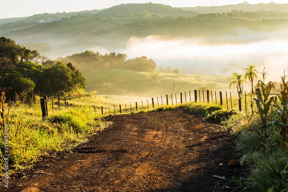 Fototapety, obrazy: Manhã de inverno na fazenda em nevoeiro branco lindo