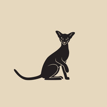 Siamese Cat - Isolated Vector Illustration - Vector