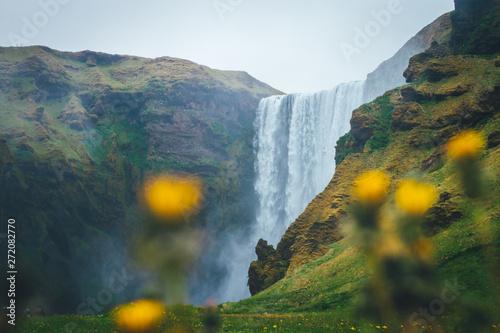 Cadres-photo bureau Rivière de la forêt Skogafoss waterfall, Iceland