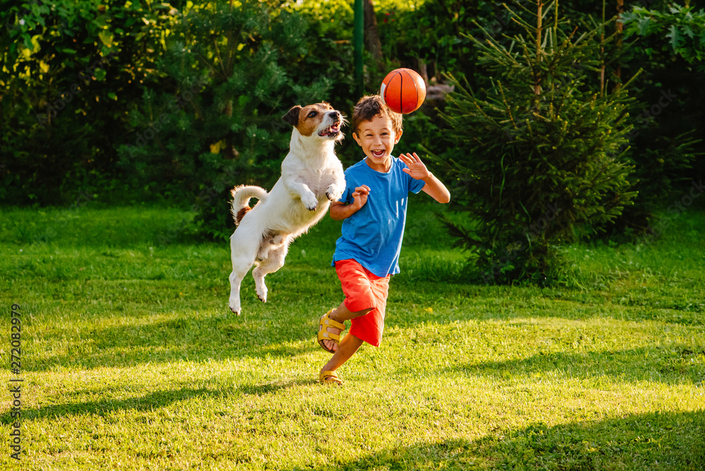 Fototapety, obrazy: Family having fun outdoor with dog and basketball ball