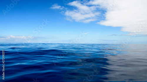 Fototapeta Wide angle shot on the open Atlantic sea during wale watching on the wonderful island of Madeira: Portugal, Europe. obraz na płótnie