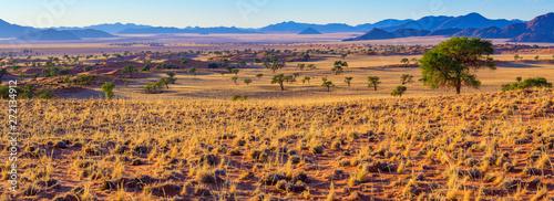 malerische Landschaft am Rande der Namib, Panorama, NamibRand-Naturreservat, Namibia © Manok