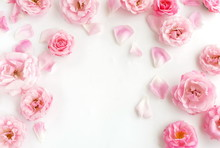 Flowers Composition Background. Beautiful Pale Pink Roses Pattern On White  Background.Top View.Copy Space