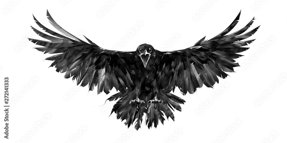 Fototapeta painted portrait of a raven on a white background in front with a wingspan