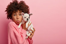 Photo Of Dissatisfied Dark Skinned Woman Owner Of Domestic Animal, Purses Lower Lip, Sad Her Pet Being Ill, Carries French Bulldog Puppy To Vet, Wears Oversized Pink Jumper, Models Indoor, Copy Space