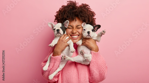 Photo of joyful dark skinned lady with Afro haircut, feels fun, carries two little french bulldog puppies, expresses affection, have good relationship, owner feels responsibility Fototapet