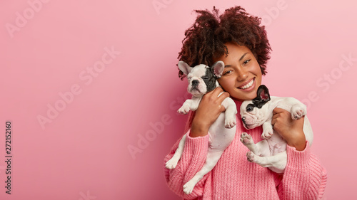 Valokuvatapetti Happy female pet lover poses with two pedigree dogs, tilts head, has curly hair, wears pink sweater, isolated over rosy background, free space for your advertising