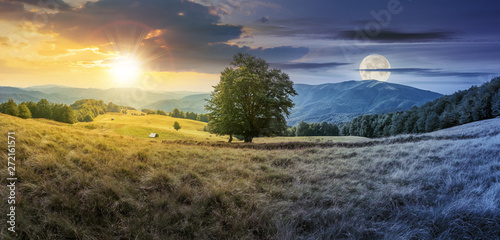 Fotomural day and night time change concept above the beech tree on the meadow in mountains