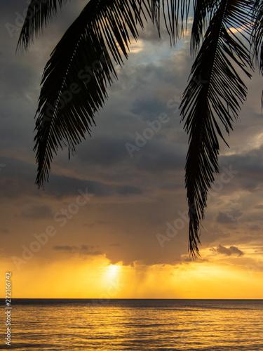 Foto op Aluminium Oranje Views around the caribbean island of Dominica West indies