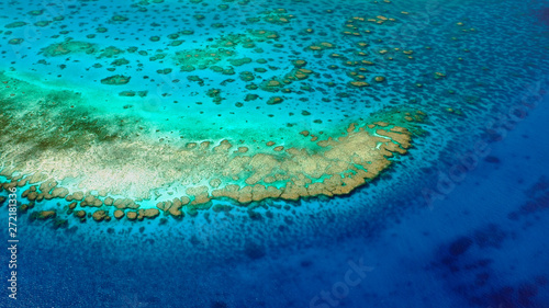 Turquoise corals of the Lodestone Reef, Great Barrier Reef, Queensland, Australia