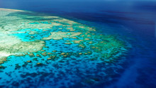 Shallow Edge Of The Back Reef (Lodestone Reef, Great Barrier Reef, Australia)
