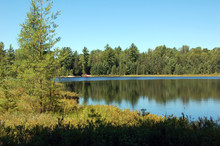 Lake In Sunny Pine Forest In Algonquin Park.