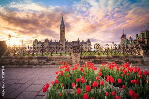 Cuadros en Lienzo  View of Canada Parliament building in Ottawa during tulip festival