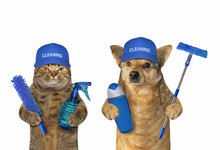 The Dog And The Cat Work As Cleaners Together. White Background. Isolated.