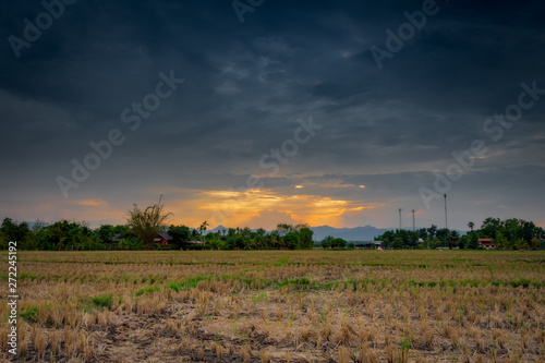 Keuken foto achterwand Crimson Field agriculture and rain clouds with sunrays