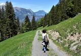 Fototapeta Do pokoju - alpes