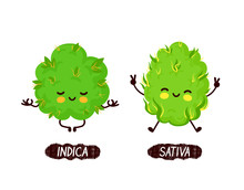 Happy Cute Smiling Indica And Sativa Weed Bud
