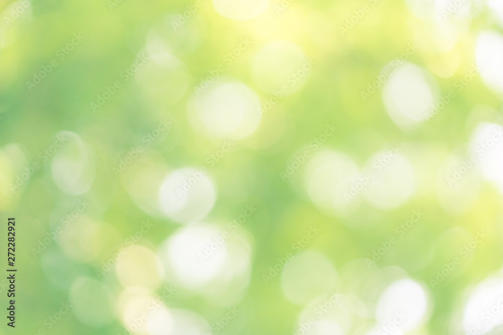 Fototapety, obrazy: abstract blur green color for background,blurred and defocused effect spring concept for design