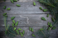 Green Pine Cone. Pine Cone On Grey Old Wood Table Background