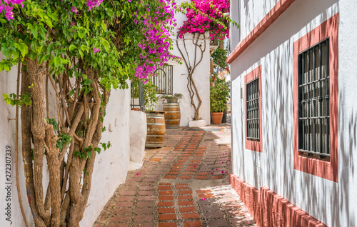 Picturesque sight in Marbella old town, province of Malaga, Spain Canvas Print