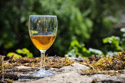 Obraz na plátně  Verre de vin du Jura