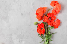 Red Poppy Flowers Bouquet On Concrete Background. Flat Lay. Top View