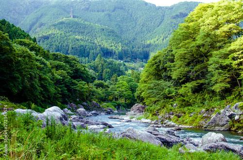 夏の奥多摩の渓谷の風景