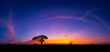 canvas print picture - Panorama silhouette tree in africa with sunset.Tree silhouetted against a setting sun.