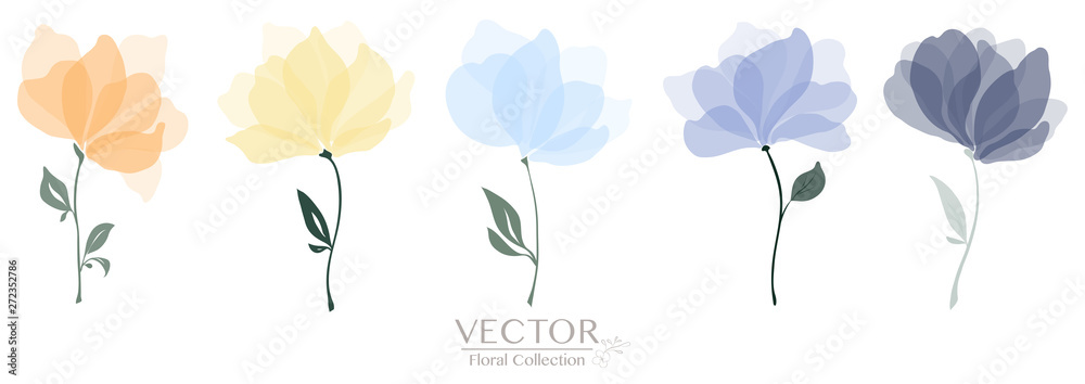 Fototapety, obrazy: Set of colorful floral collection