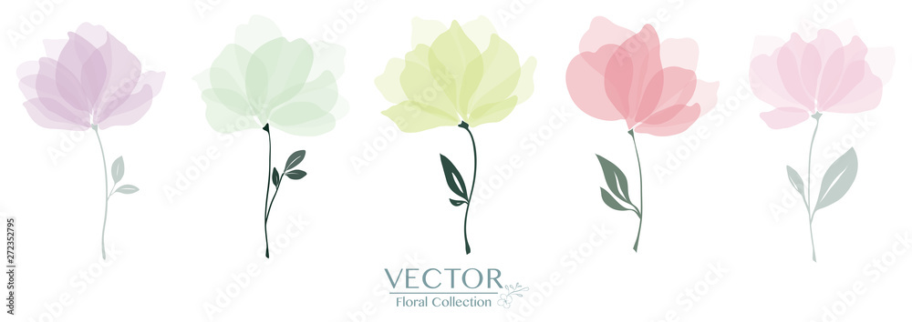 Fototapety, obrazy: Set of cute floral collection