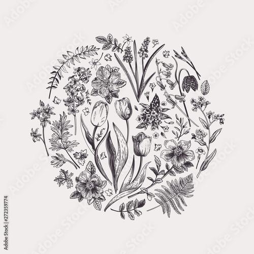 Fototapeta Floral round composition. obraz