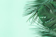 canvas print picture Summer composition. Palm leaves on mint background. Summer concept. Flat lay, top view, copy space