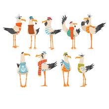 Seagulls Sailors Set, Funny Birds Cartoon Characters Vector Illustration