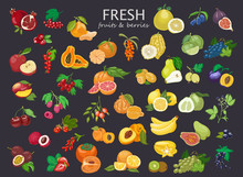 Big Set Of Colored Fruits And ...