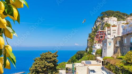 Poster Mediterranean Europe Beautiful rocky Capri Island in Italy