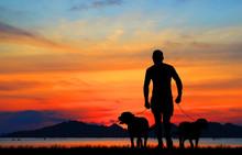 Silhouette Man And Dog  Walk O...