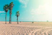 Famous Sandy Venice Beach In L...