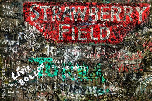 Fotografie, Obraz Strawberry Field