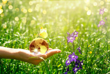 Earth Glass Globe And Butterfly With Yellow Wings In Human Hand On Green Grass And Bluebell Flowers Background. Saving Environment Concept.