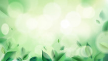 Green Nature Background With Blurred Spring Leaves Vector Illustration