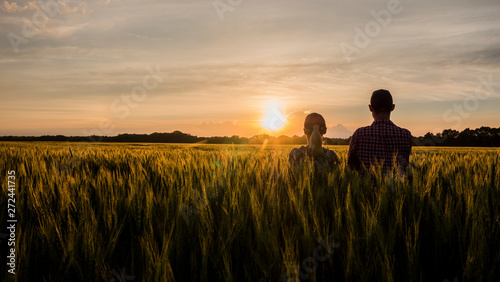 Fototapeta Two farmers, a man and a woman, are looking forward to the sunset over a field of wheat. Teamwork in agribusiness obraz