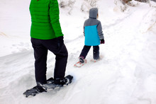 Family Snowshoeing In The Wint...