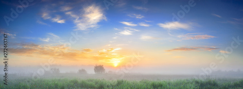 summer landscape panorama with sunrise and fog