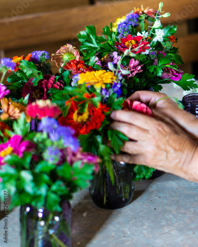 Hands working arranging colorful flowers in jars on a farmstead for a farm to ta Fototapet