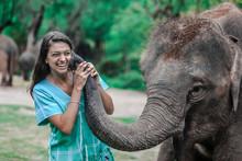 Girl Having Fun With Elephants At Patara Elephant Farm, Chiang Mai, Thailand