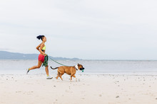 Fitness With A Dog On The Beach