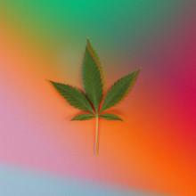 Psychedelic Cannabis Leaf
